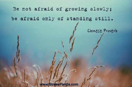 Growing slowly, a chinese proverb