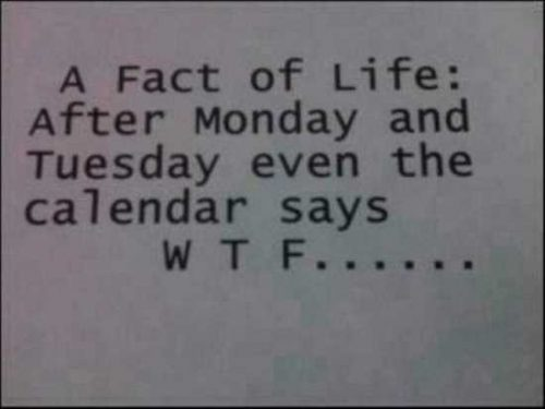 True fact about weekdays